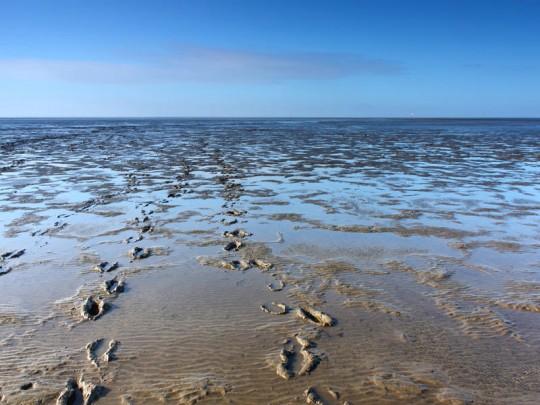 buesum-ferienwohnung-wattenmeer